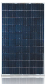 Ulica Solar UL-255P-60 255 Watt Solar Panel Module Image