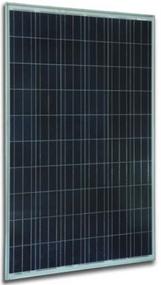 Solar Innova SI-ESF-M-P156-72 295 Watt Solar Panel Module Image