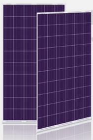 Calrays CSM250P-B-60 250 Watt Solar Panel Module