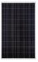 JA Solar JAM6 (R) 60-275 275 Watt Solar Panel Module