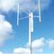 Ropatec T30pro 30kW Wind Turbine