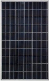 Gintech Energy P6-60-260 260 Watt Solar Panel Module