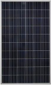 Gintech Energy GIN-P6-60-BK-240 240 Watt Solar Panel Module