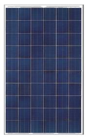 Neo Solar NSP280-D6P-B3A 280 Watt Solar PV Module