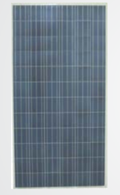 China Sunergy CSUN310-60P 310 Watt Solar Panel Module