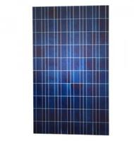Perlight PLM240P-60 250 Watts Solar Panel