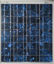 BP 365 65 Watt Solar Panel Module image
