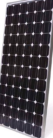 BP 4175T 175 Watt Solar Panel Module image