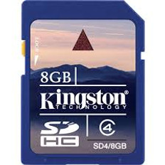 Kingston 8 GB SD Card