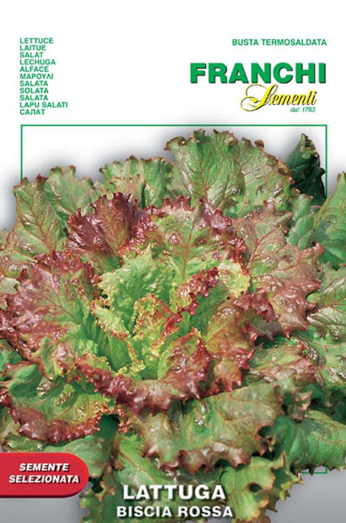 Lettuce Biscia Rossa (78-21)