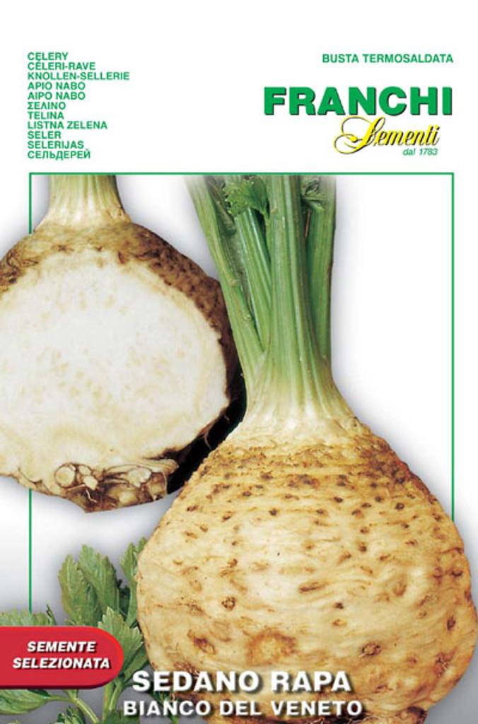 Celeriac Bianco del Veneto (125-4)