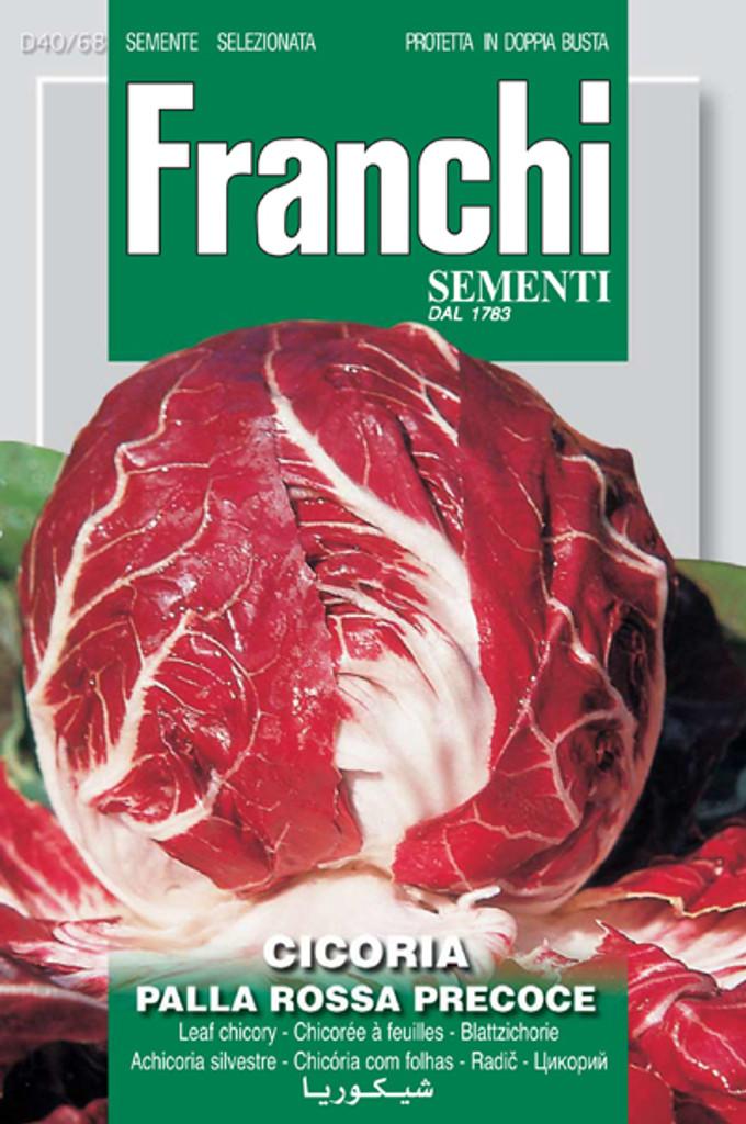 Radicchio Palla Rossa 3 (40-68)