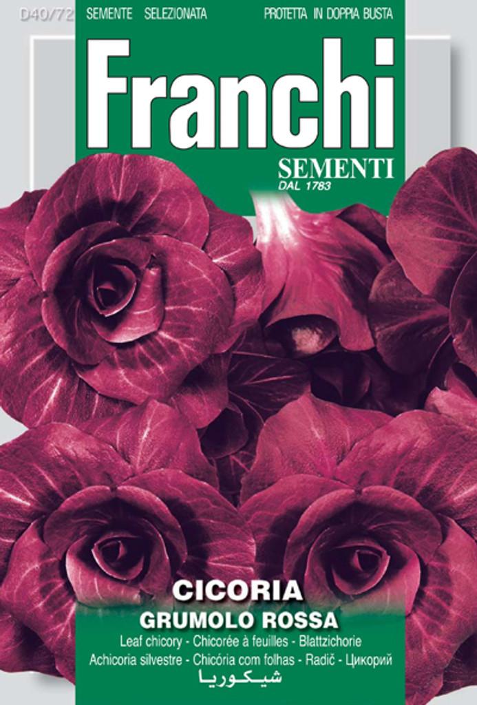 Radicchio Rossa Verona Tardiva Grumolo Type (40-72)