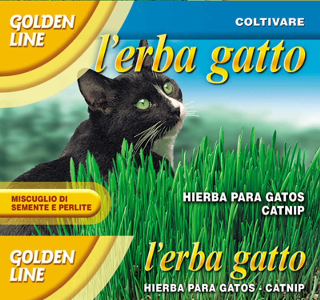 Cat Grass/Erba Gatto (54-13)