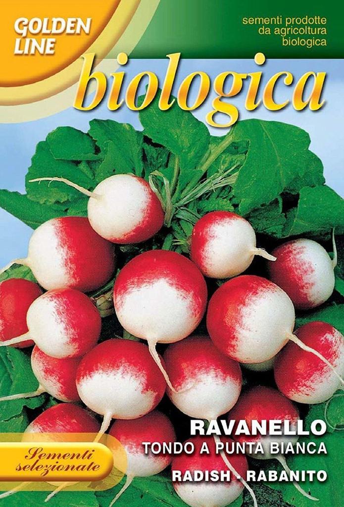 Radish Gaudry 2 Organic (112-3B)