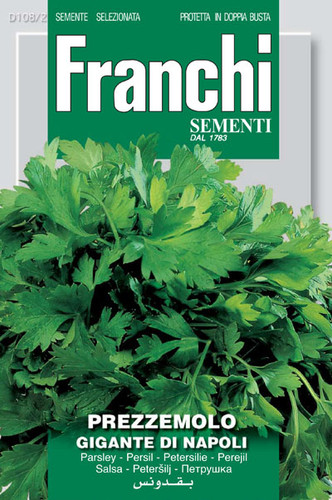 Parsley Gigante di Napoli (108-2)