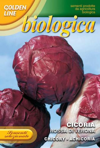 Radicchio Rossa di Verona -- Certified Organic (40-13B)