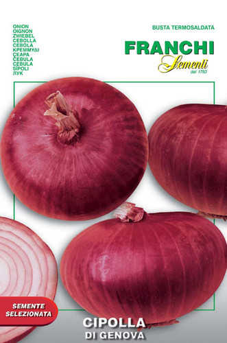 Onion Genovese (42-5)