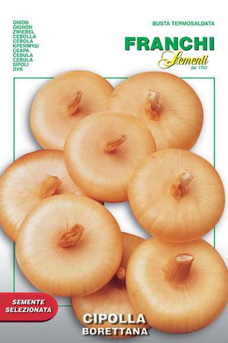Onion Borettana (43-2)