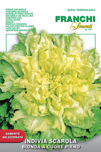 Escarole Bionda Cuore Pieno (121-2)