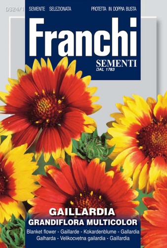 Gaillardia Grandiflora Multicolor Mix - Blanket Flower (324-1)