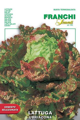 Lettuce Ubriacona (86-38)