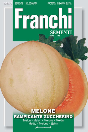 Melon Rampicante Zuccherino (91-7)