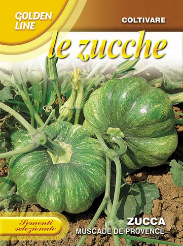 Pumpkin, Moscade de Provence (145-18)