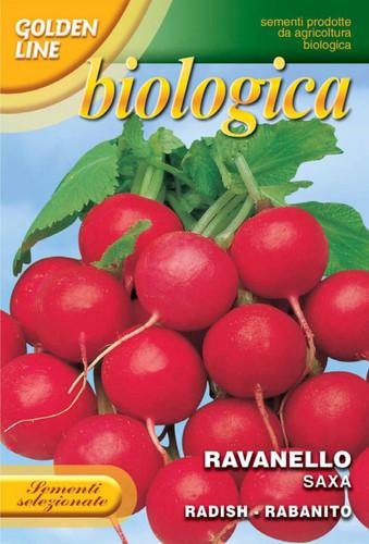 Radish Saxa 2 -- Certified Organic (112-11B)