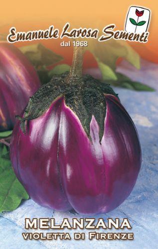 Eggplant Violette di Firenze (90-98)