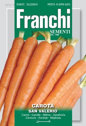 Carrot San Valerio (DBO 23-10)