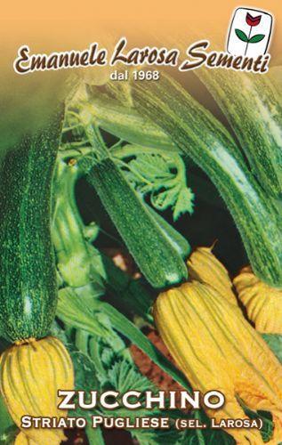 Zucchino Striato Pugliese   (146-82)
