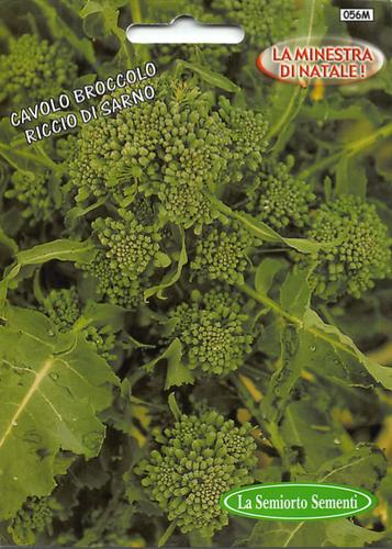 Cavolo Broccolo - Riccio di Sarno  (25-33)