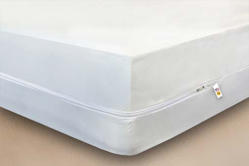 Mattress Safe<sup>®</sup> Box Spring