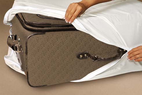 luggage encasement bed bug