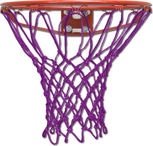 Krazy Netz Laker's Purple Basketball Net