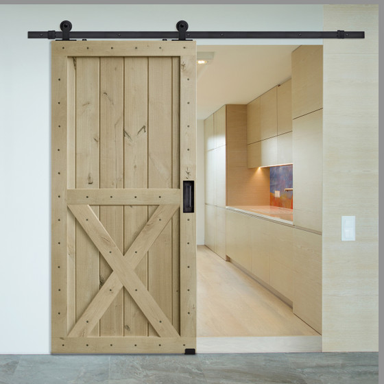 Two Panel X Barn Door