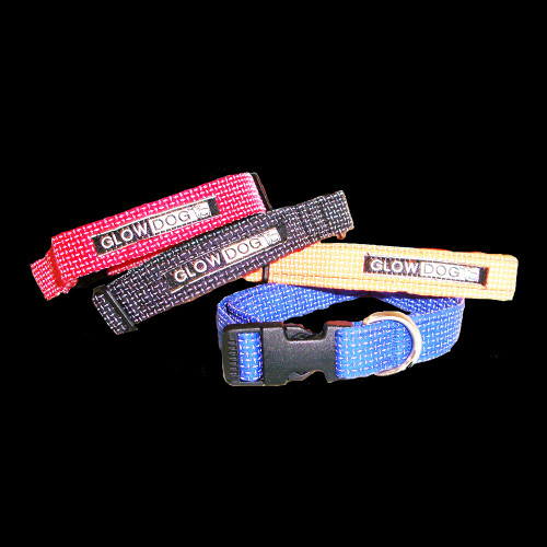 Glow Dog Reflective Fido Snap Lock Collar Night View