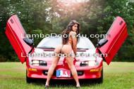 Pontiac Firebird Trans Am Vertical Lambo Doors Bolt On 93 94 95 96 97 98 99 00 01 02