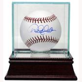 Steiner Baseball Glass Display Case