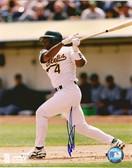 Miguel Tejada Oakland Athletics Signed 8x10 Photo #5