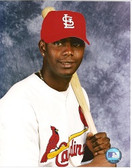 Edgar Renteria St. Louis Cardinals 8x10 Photo #3