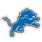"Detroit Lions 12"" Vinyl Magnet Set Of 2"