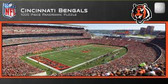 Cincinnati Bengals Panoramic Stadium Puzzle