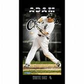 Chicago White Sox Adam Dunn Player Profile Wall Art 9.5x19 Framed Photo