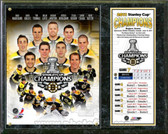 Boston Bruins 2011 NHL Stanley Cup Champions Plaque