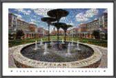 TCU Horned Frog Fountain Mosaic