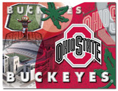 Ohio State Buckeyes Printed Canvas