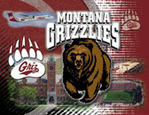 Montana Grizzlies Printed Canvas