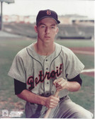 Al Kaline Detroit Tigers 8x10 Photo #1